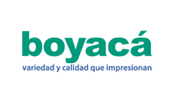 clientes Invoce Telecom - Almacenes Boyacá